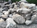 桂川水系庭石